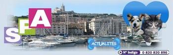 SPA MARSEILLE - PROVENCE Index du Forum