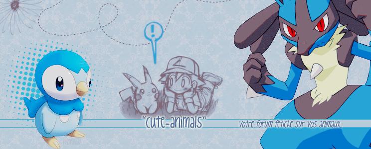""""""" Cute-Animals """" Index du Forum"""