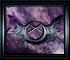 Les Anges Noirs au Crépuscule des Dieux Index du Forum