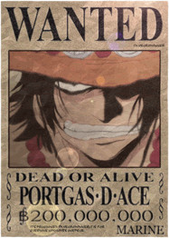 One piece avatars Onepiece_portgas.d.ace_6-595d37