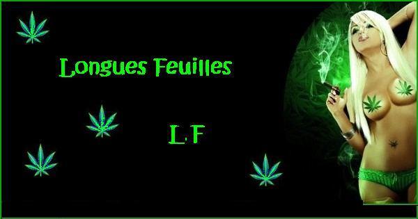 Forum de l'alliance ~L.F~ Index du Forum