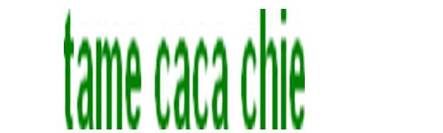 Team Caca Chie Index du Forum